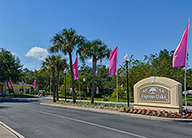 A beige Cypress Oaks entry sign in front of a road lined with large pink flags and palm trees.